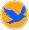 Amechtal Racing Pigeons